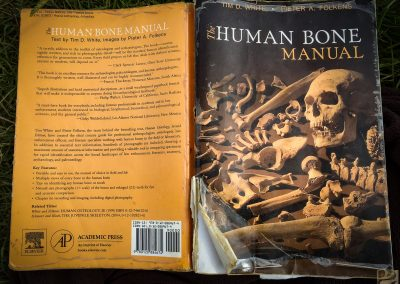 The Bone Bible